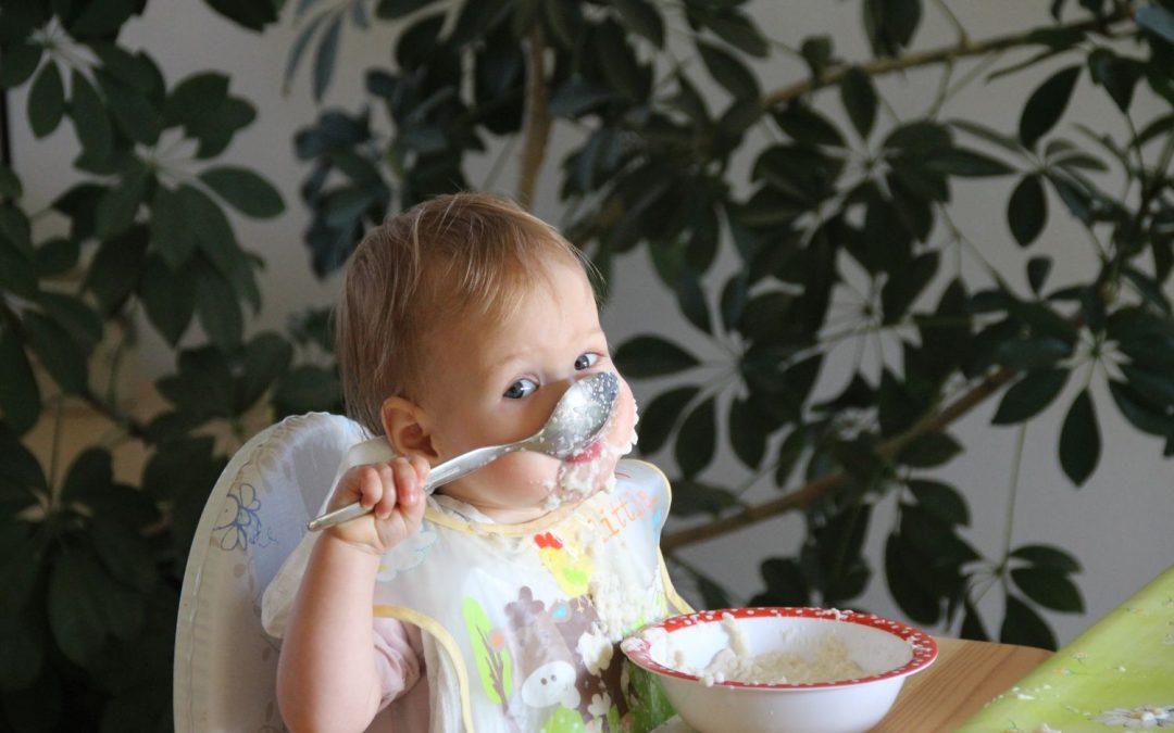 Studie zur Untersuchung der Qualität des Mittagessens in Kitas auf der Basis von Speiseplänen